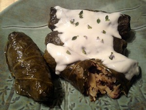 stuffed grape leaves with foraged edible wild plants